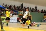 zubri-frydek_playoff_2260